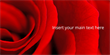 Valentines Day Banner Rose 2x1m