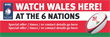 PVC Banner - 6ft x 2ft - Sports - 6 Nations - Wales